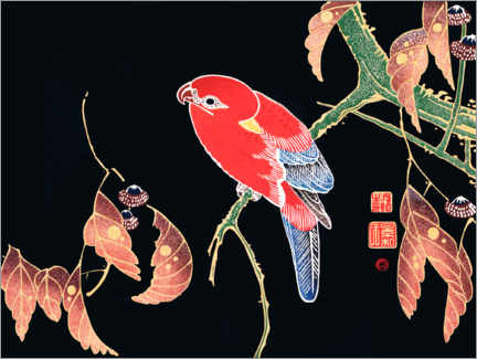 Acrylic print  Red parrot on the branch of a tree - Itô Jakuchu
