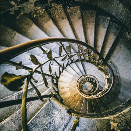 Acrylic print  Spiral stairacse in a derelict hotel - Irnmonkey