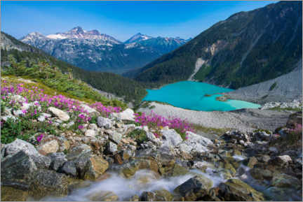 Aluminium print  Wildflowers on Upper Joffre Lake - Yuri Choufour
