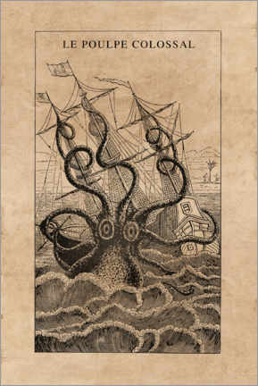Canvas print  The giant octopus - Wunderkammer Collection