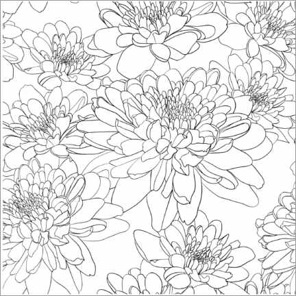 Colouring poster Chrysanthemums