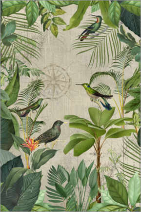 Premium poster Tropical Journey Of Birds