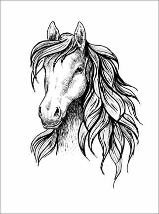 Colouring poster Horse head