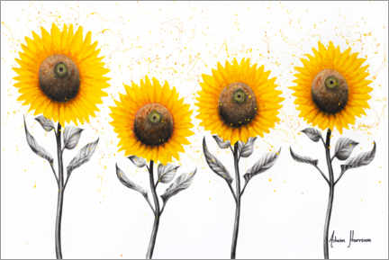 Acrylic print  Sunflower Family - Ashvin Harrison