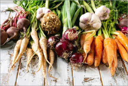Canvas print  Variety of root vegetables - The Picture Pantry