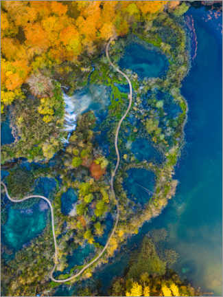 Gallery print  Autumn in Plitvice National Park in Croatia - Dennis Schmelz