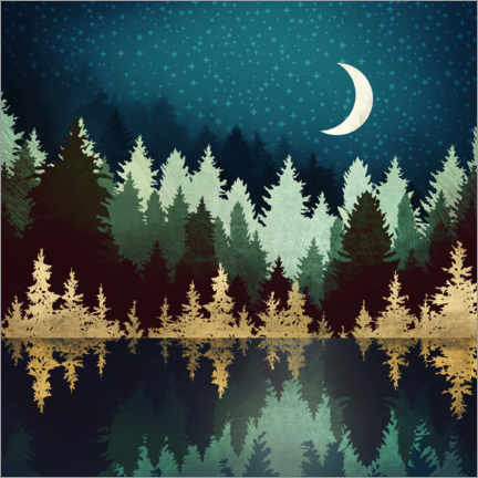 Premium poster Forest lake under the starry sky