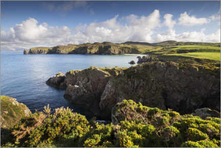 Premium poster Ireland's coastline with hills and coves in sunshine