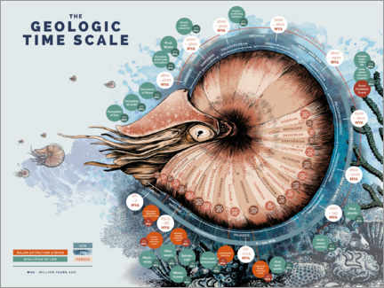 Wood print  The Geological Time Scale (English) - Velozee