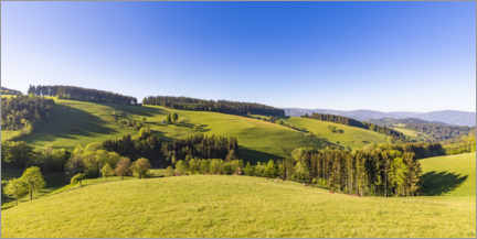 Premium poster  Spring at St. Peter in the Black Forest - Dieterich Fotografie