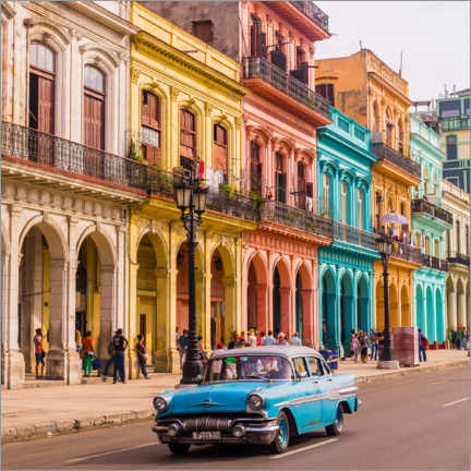 Acrylic print  Classic car in Havana, Cuba - Julian Peters