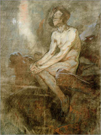 Premium poster Nude male sitting on a cliff