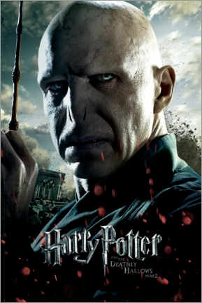 Canvas print  The Deathly Hallows II - Voldemort