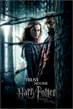 Premium poster The Deathly Hallows I - Hermione & Ron