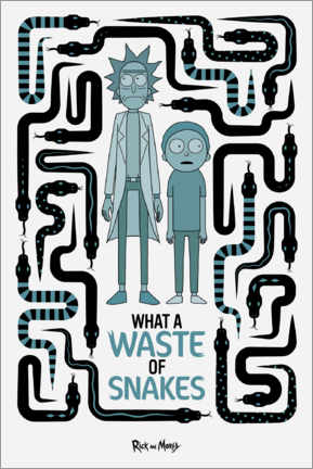 Wall sticker  Rick and Morty - Waste of Snakes