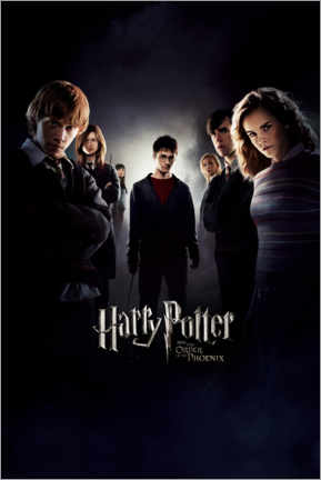 Canvas print  Harry Potter and the Order of the Phoenix