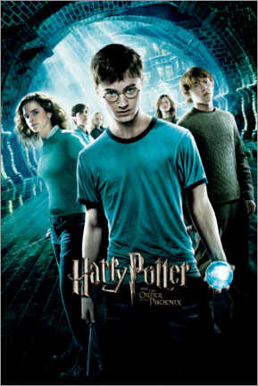 Premium poster  The Order of the Phoenix - Dumbledore's Army