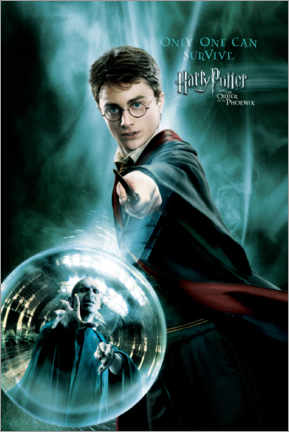 Canvas print  The Order of the Phoenix - Harry Potter