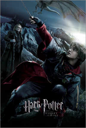 Premium poster  The Goblet of Fire - Triwizard Tournament