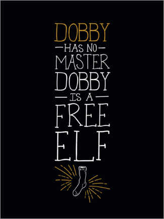 Canvas print  Dobby has no master - Quote