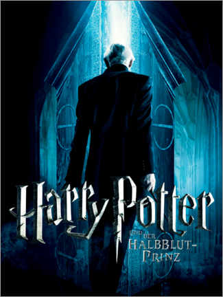 Premium poster The Half-Blood Prince - Vanishing Cabinet