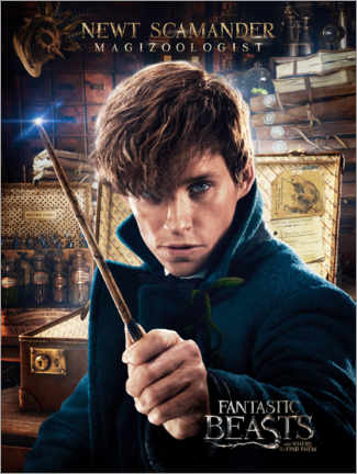 Canvas print  Fantastic Beasts and Where to Find Them - Newt Scamander