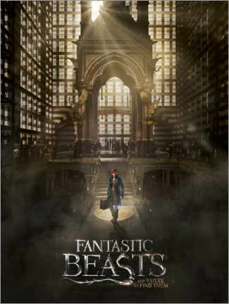 Wall sticker  Fantastic Beasts and Where to Find Them - Newt
