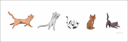 Aluminium print  Playful domestic cats - Becky Thorns