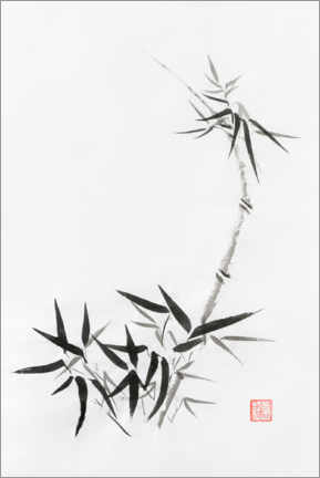 Acrylic print  Bamboo stem with young leaves - Oleksiy Maksymenko