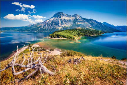 Premium poster  Sunny day at Waterton Lake National Park, USA - Frank Fischbach