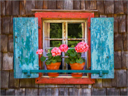Canvas print  Flower window with geraniums - Wolfgang Weinhäupl