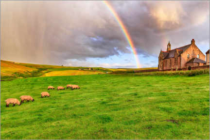 Wall sticker  Meadow with rainbow in Pennan - Angela to Roxel