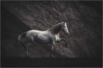 Wood print  White mare - Heike Willers
