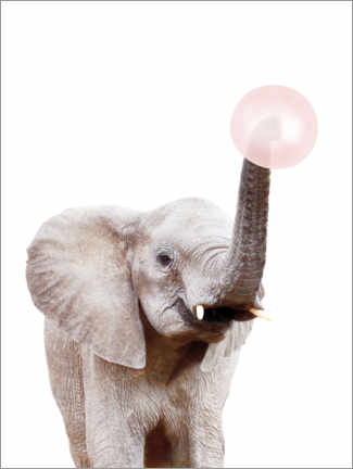 Canvas print  Elephant with Bubble gum - Sisi And Seb