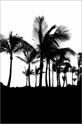 Premium poster Palm trees silhouettes