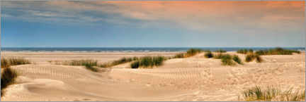 Premium poster Sandy beach with dune grass