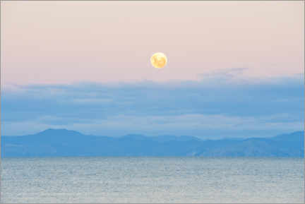 Wall sticker  Moon rise on Kaiteriteri Beach, New Zealand - Matthew Williams-Ellis