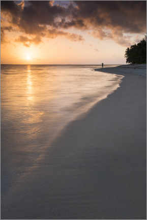 Aluminium print  Sunset on a tropical beach - Matthew Williams-Ellis