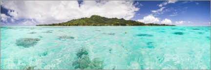 Acrylic print  Tropical island of Rarotonga in the Pacific Ocean - Matthew Williams-Ellis