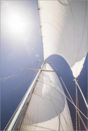 Wall sticker  Sails and summer sun - Matthew Williams-Ellis