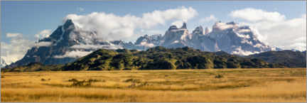 Premium poster  Patagonian Andes - Torres del Paine - Dieter Meyrl