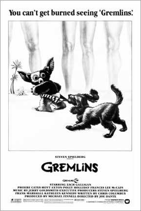 Premium poster Gremlins - Gizmo on the beach