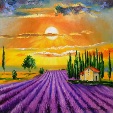 Premium poster Sunset over the  lavender field