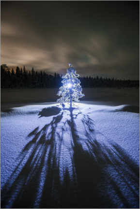 Wood print  Lonely tree at night in the winter landscape - Matthew Williams-Ellis
