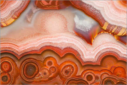 Acrylic print  Lace agate - Mark Windom
