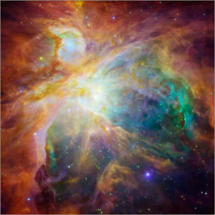 Canvas print  Orion Nebula - NASA