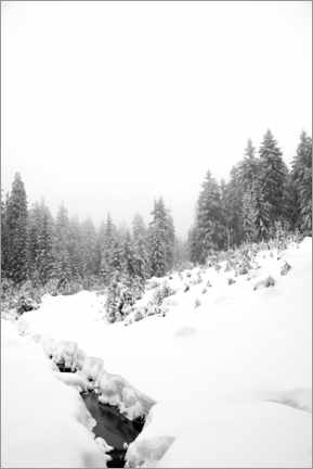 Premium poster Black water in the white winter forest