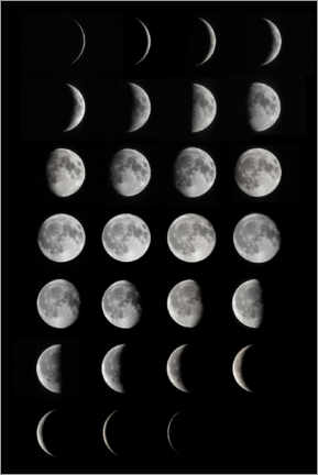 Premium poster  Phases of the moon - Larry Landolfi
