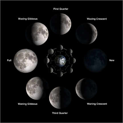 Premium poster Phases of the moon