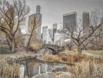 Canvas print  Central Park in New York - Assaf Frank